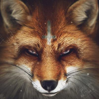 FoxiriS