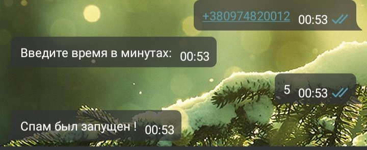 IMG_20191215_005335.jpg