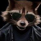 Raccoon_smm